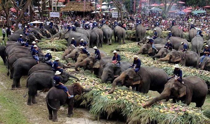 приколы про таиланд фото (17)