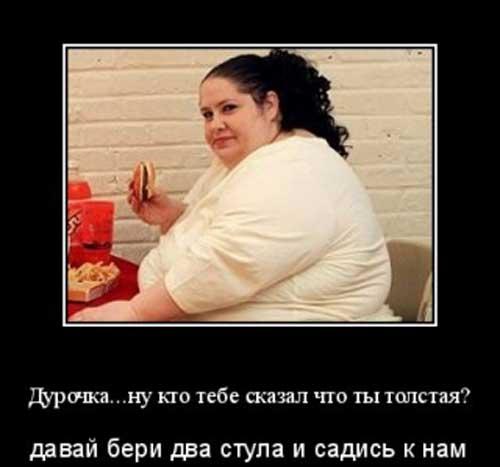 приколы про толстых (14)