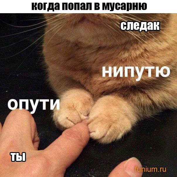приколюхи_ОПУТИ