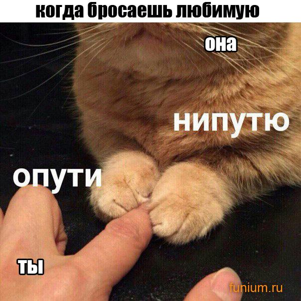 ржачные_мемы_ОПУТИ