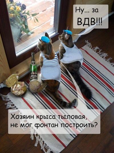 ВДВ Приколы картинки демотиваторы (16)