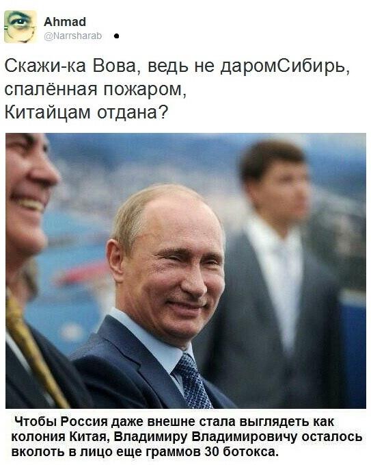 приколы про выборы и Путина (15)