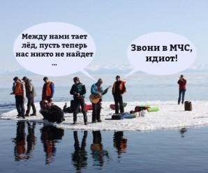 Грибы — Тает Лёд — смешные картинки, мемы и пр.