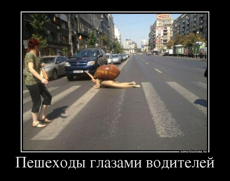 День водителя шутки и смешные картинки (1)