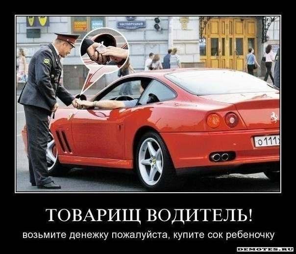День водителя шутки и смешные картинки (11)