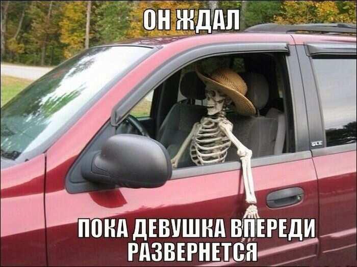 День водителя шутки и смешные картинки (13)