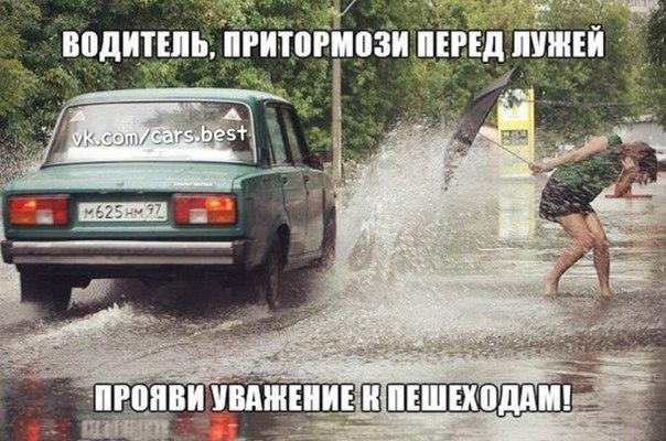 День водителя шутки и смешные картинки (16)