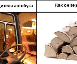День водителя (ШОФЁРА, АВТОМОБИЛИСТА) — приколы и мемы