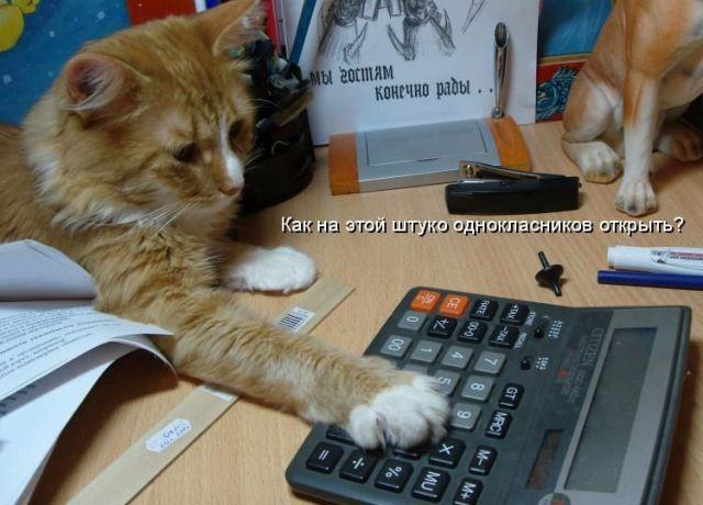 приколы к Международному дню бухгалтера (12)