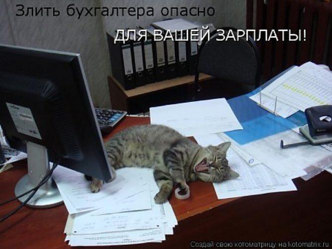 приколы к Международному дню бухгалтера (7)