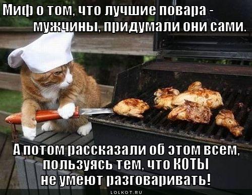 приколы на день повара (15)
