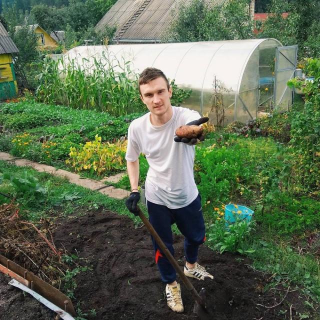 белорусы и картошка фото (14)