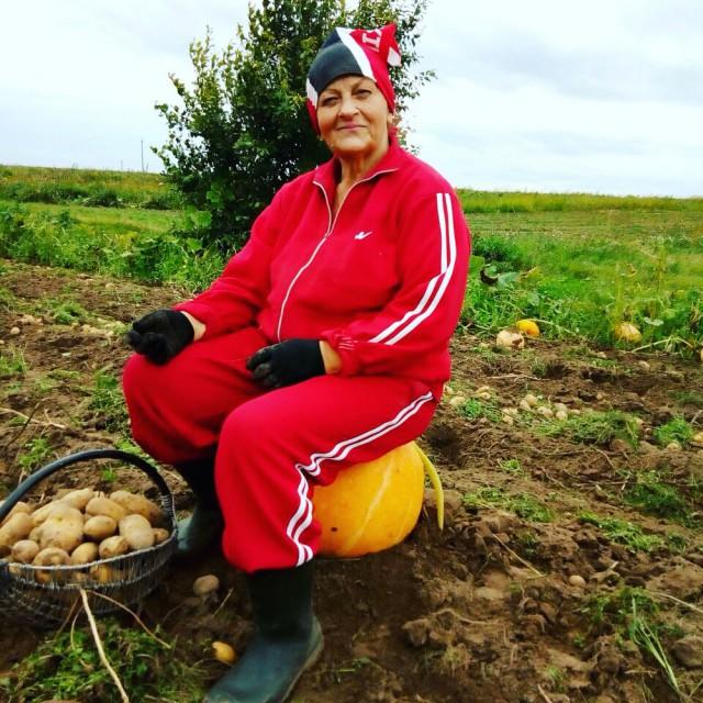 белорусы и картошка фото (22)