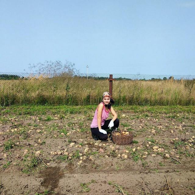 белорусы и картошка фото (25)