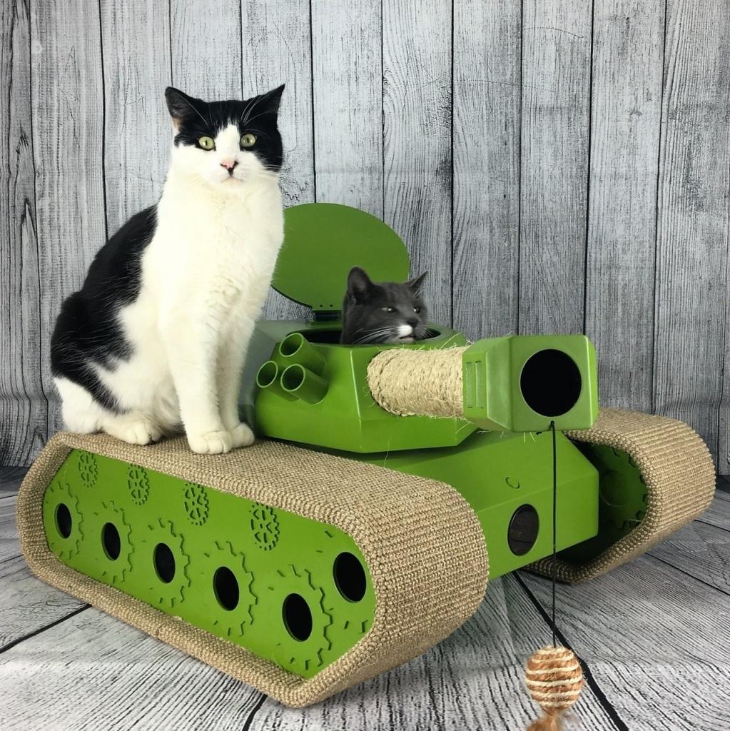 мемасы про котиков (6)