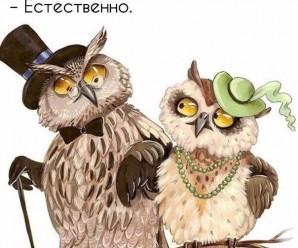 Свежие приколы из ВКонтакте (45 ФОТО)