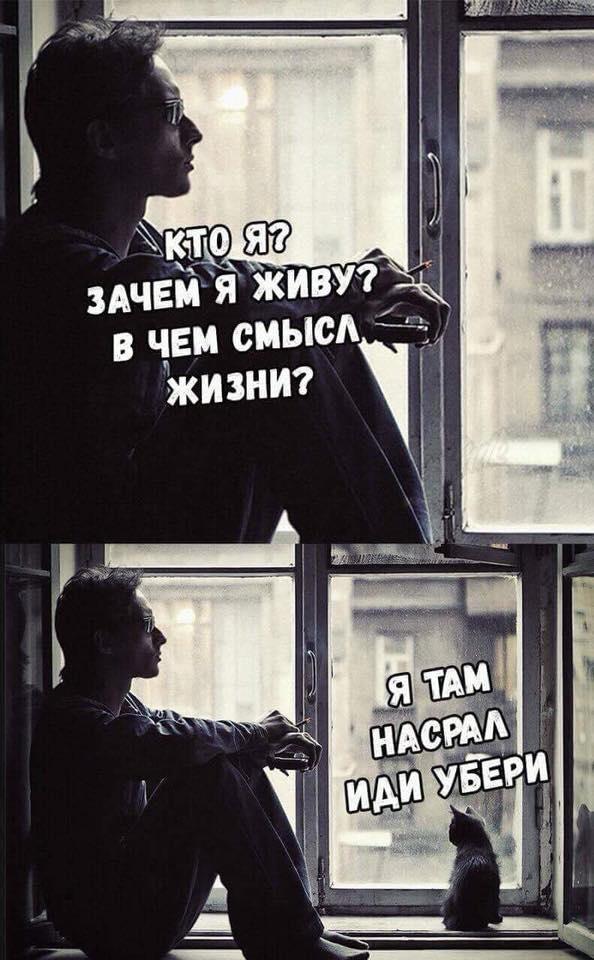 свежие приколы в Вконтакте (5)