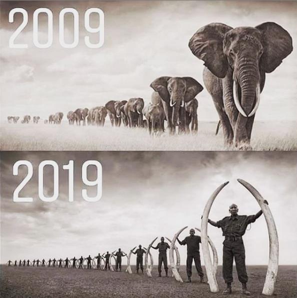 челлендж 2009 2019 приколы мемы картинки (1)