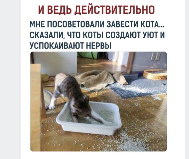 приколы мемы июль 2019 (12)