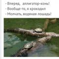 Мемасы НА ИЮЛЬ 2019
