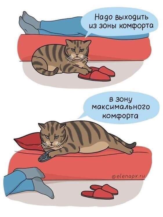 мемы юмор с хорошим вкусом (3)